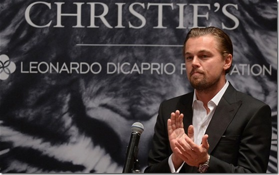 5 Generous Things Leonardo DiCaprio Has Done For Humanity