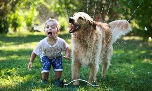 Kids Who Grow Up With Dogs And Cats Are More Emotionally Intelligent And Compassionate