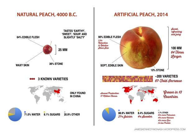 Artifical vs Natural Peach