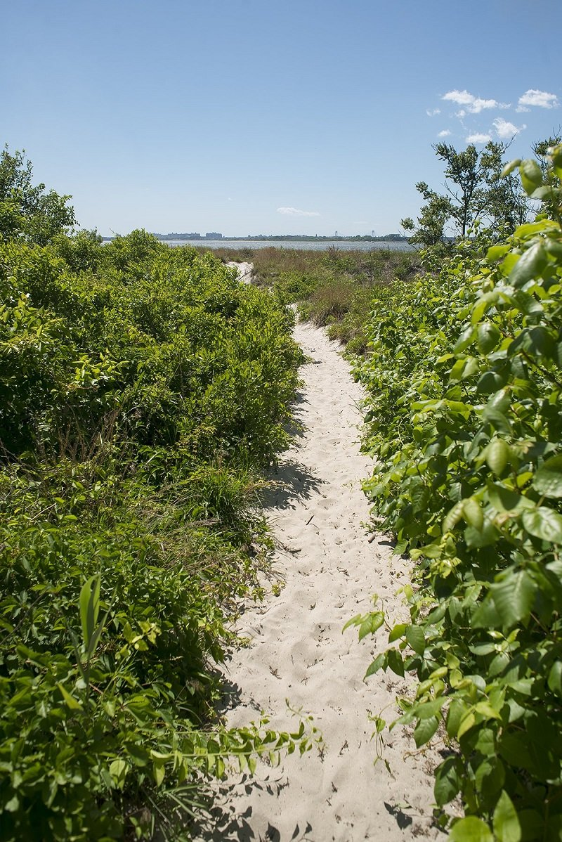 but-soon-the-grass-gives-way-to-sand-and-the-path-opens-up-onto-a-beach