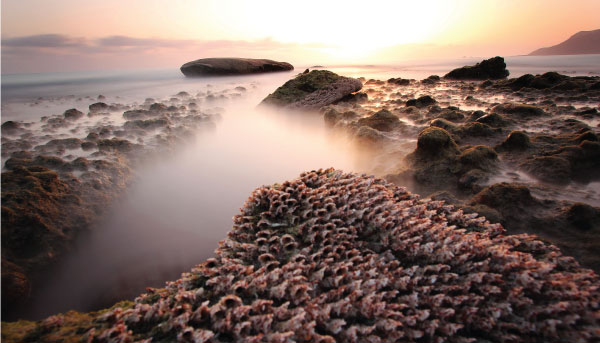 Spiritual-Places-Socotra-Archipelago