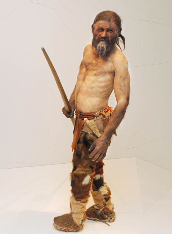 Scientists Discovered World S Oldest Iceman Mummy And It S A Goldmine Of Information