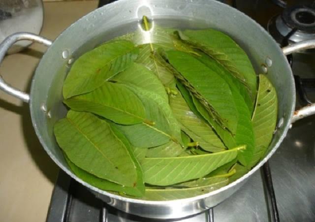 freshguava