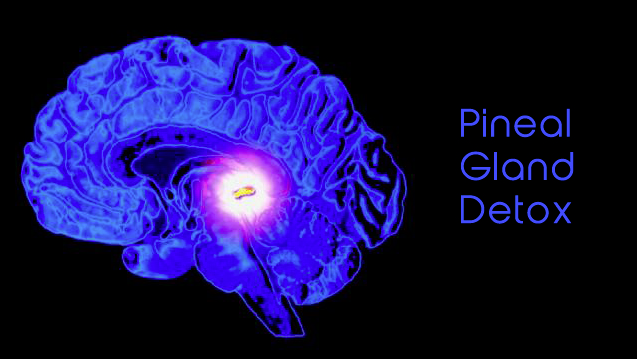 pineal-gland-detox-2